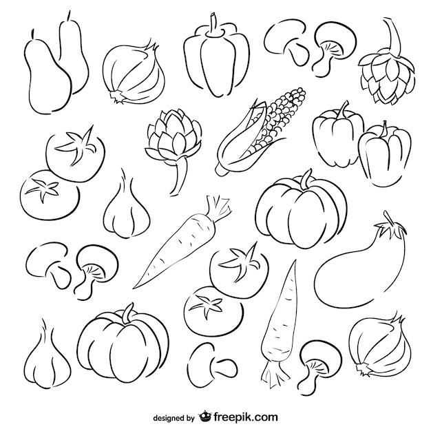Jogo do esboço legumes Vetor grátis