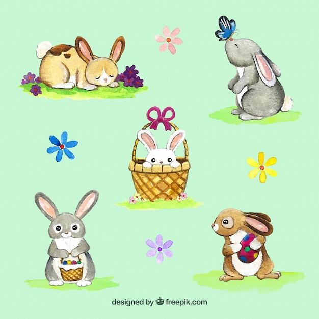 Jogo dos coelhos da aguarela e flores Vetor grátis