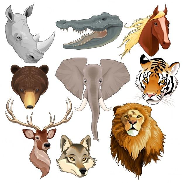 Jogo dos elementos cabeças de animais do vetor isolado Vetor grátis
