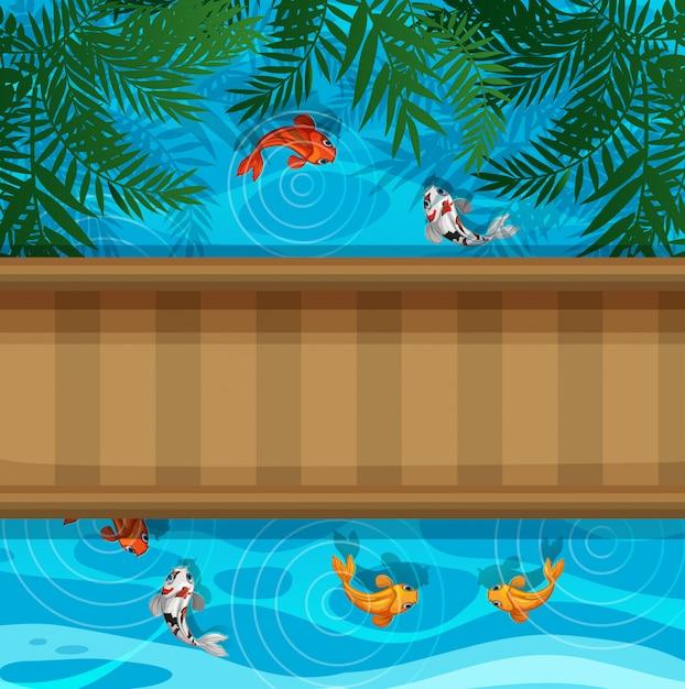 Koi peixe na lagoa com ponte Vetor Premium