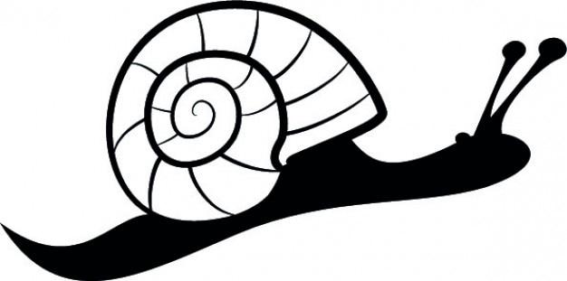 Lado caracol Vetor grátis