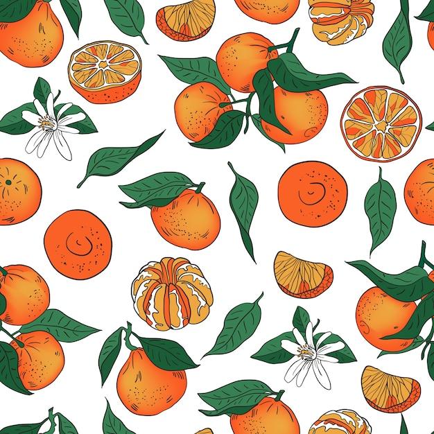Laranja tangerina mandarim com padrão de vetor de folhas Vetor Premium
