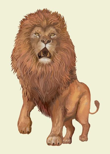 Leão desenhado de mão Vetor grátis