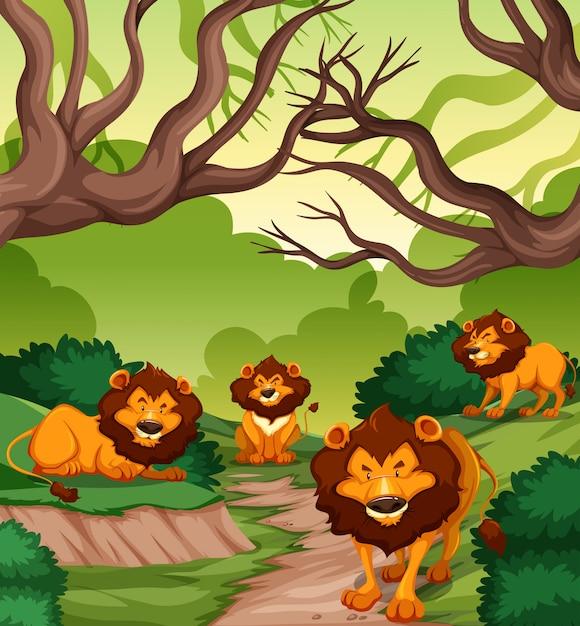 Leão na floresta Vetor grátis
