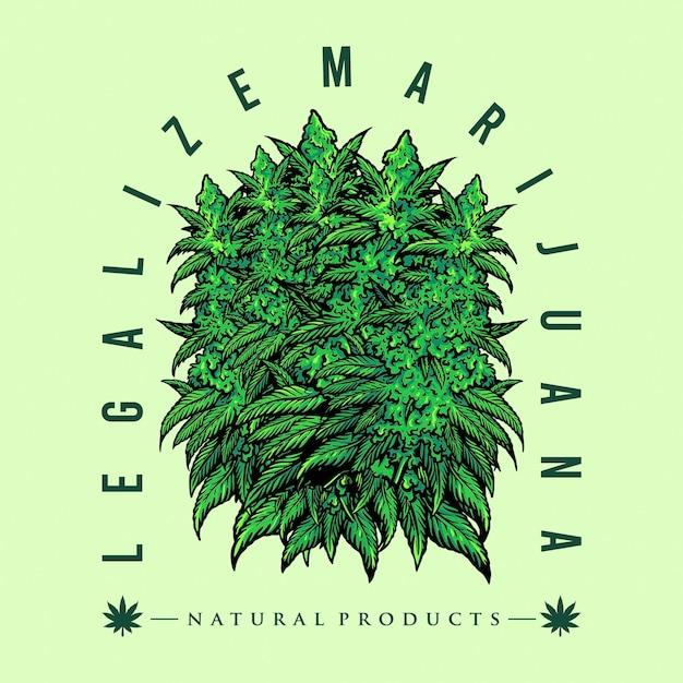Legalize as ilustrações do emblema da folha da maconha da floresta Vetor Premium
