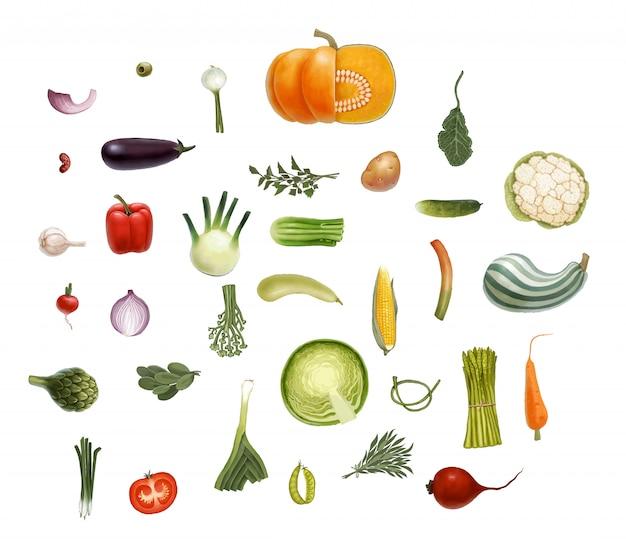 Legumes de vetor desenhados à mão Vetor Premium