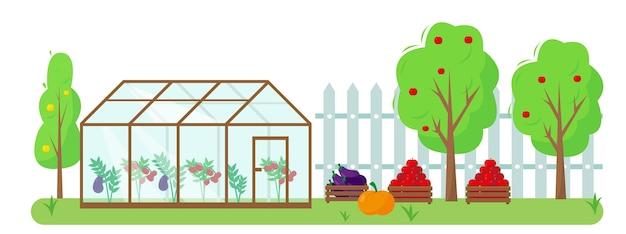 Legumes, frutas e estufa no jardim. conceito de jardinagem e colheita. banner de outono ou verão ou ilustração de fundo. Vetor Premium