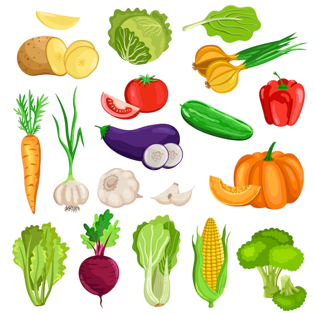 Legumes isolados no fundo branco Vetor Premium