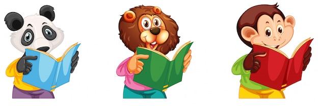 Leitura de panda, leão e macaco Vetor grátis