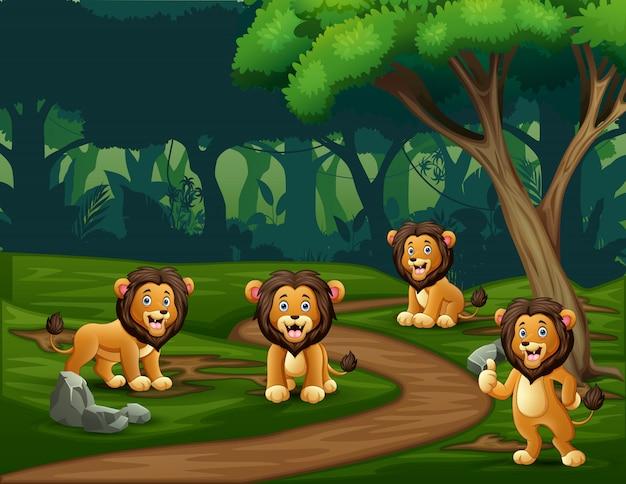 Leões de um grupo desfrutando na floresta Vetor Premium