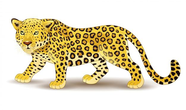 Leopardo dos desenhos animados isolado no fundo branco Vetor Premium