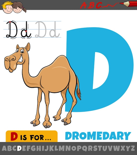 Letra d do alfabeto com desenho de animal dromedário Vetor Premium
