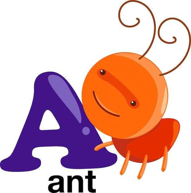 Letra do alfabeto animal - um Vetor Premium