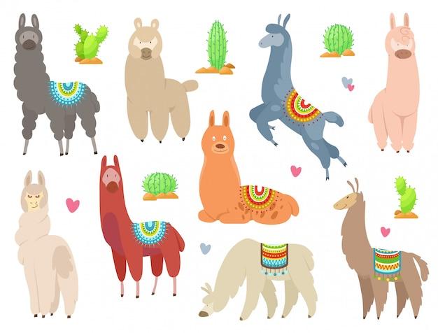 Lhamas e alpacas bonitinha. animais sorridentes engraçados isolados no branco. Vetor Premium