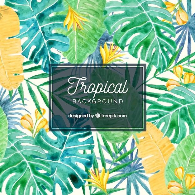 Linda aquarela fundo tropical Vetor grátis