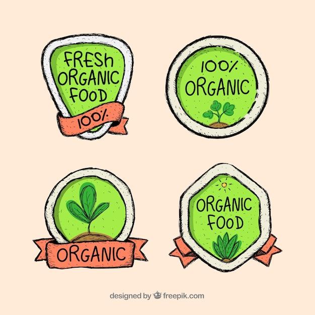 Linda composição de alimentos orgânicos Vetor grátis