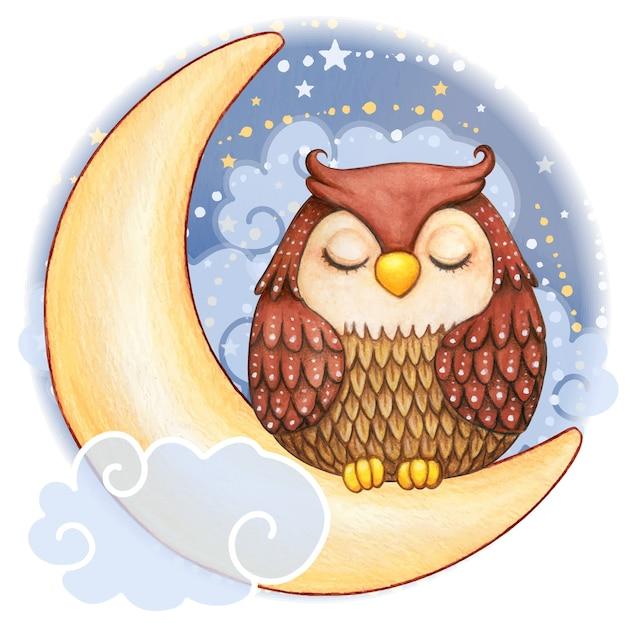 Linda coruja aquarela dormindo na lua em uma noite estrelada Vetor Premium
