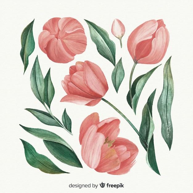 Lindas flores em aquarela e folhas Vetor grátis