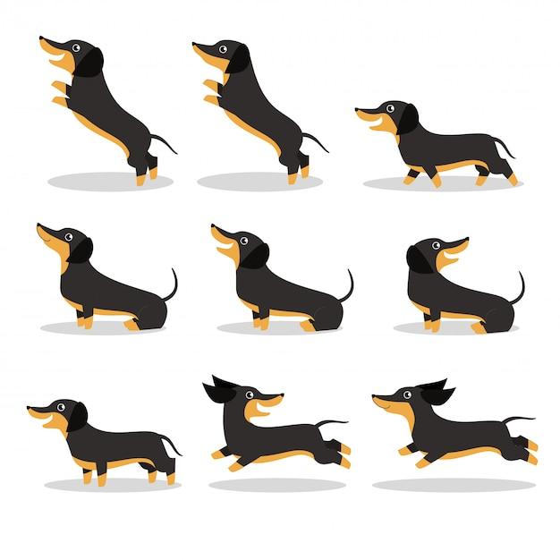 Lindo cão bassê vector conjunto de ilustração Vetor Premium