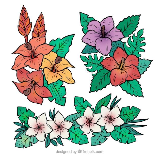 Lindo conjunto de mão desenhada flores tropicais Vetor grátis