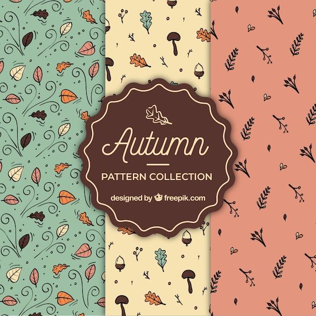 Lindo conjunto de padrões de outono mão desenhada Vetor grátis