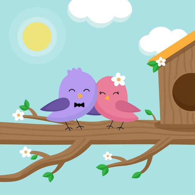 Lindo lindo par de pássaros, localização na árvore na primavera. Vetor Premium
