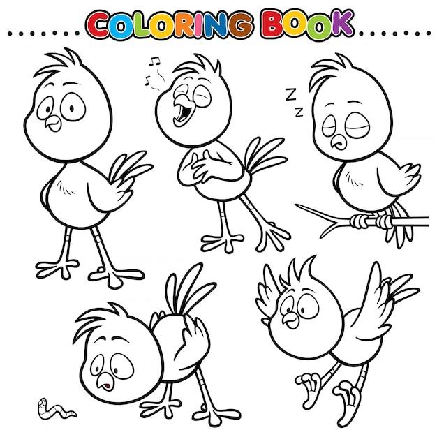 Livro De Colorir Dos Desenhos Animados Passaro Vetor Premium