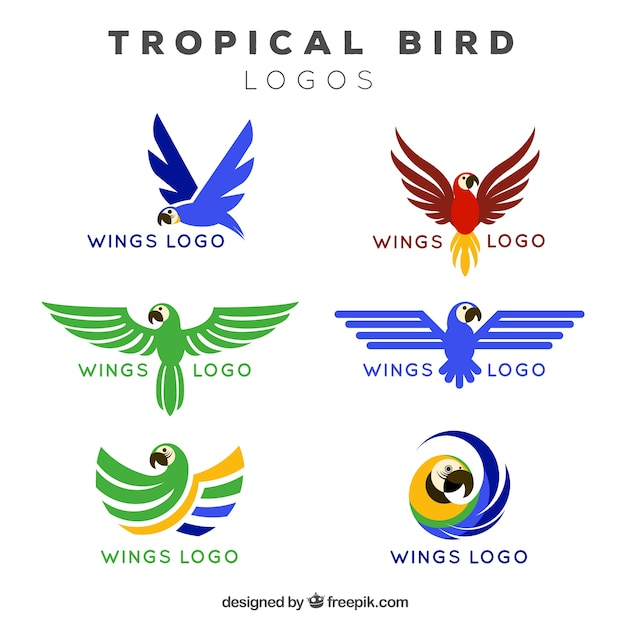Logos de asas de pássaros tropicais Vetor Premium
