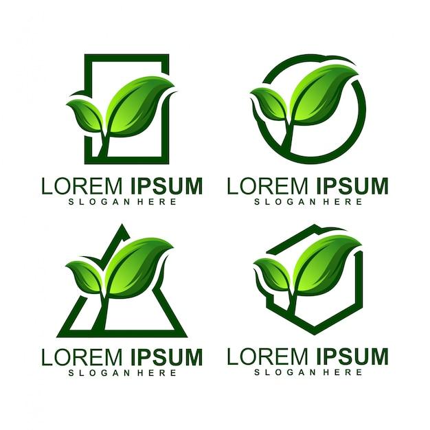 Logotipo crescer folha Vetor Premium