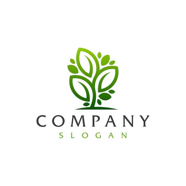 Logotipo da árvore da folha Vetor Premium