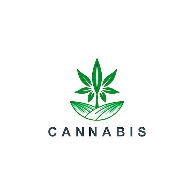 Logotipo de cannabis Vetor Premium