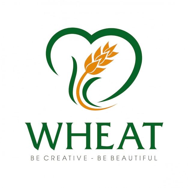 Logotipo de grãos de trigo e arroz de trigo inspiração Vetor Premium