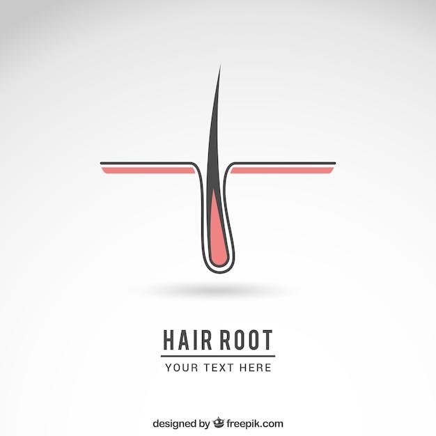 Logotipo raiz do cabelo Vetor grátis