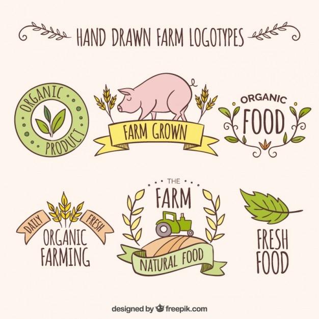 Logotipos fazenda esboços com produtos frescos Vetor grátis