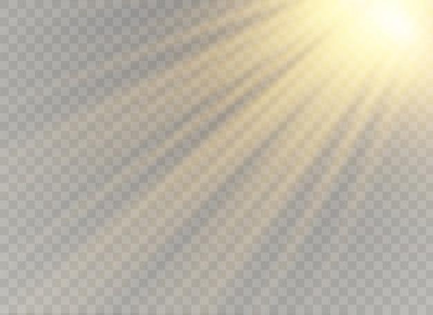 Luz solar horizontal, desfoque à luz do fundo de brilho Vetor Premium