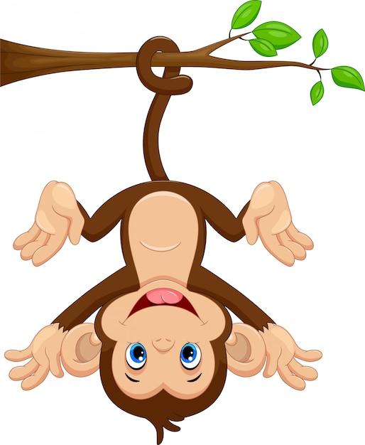Macaco bonito pendurado na árvore Vetor Premium