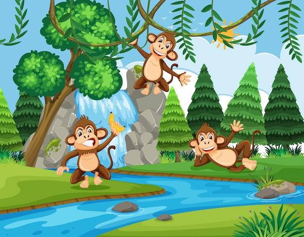 Macaco na floresta Vetor Premium