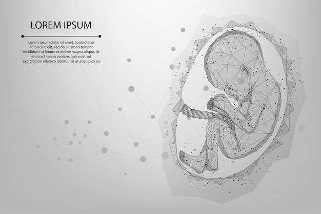 Malha e linha abstrata ilustração de wireframe poli baixa gravidez de bebê Vetor Premium