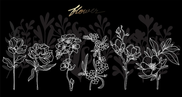 Mão de arte flor desenho e desenho preto e branco com ilustração de arte de linha isolada Vetor Premium