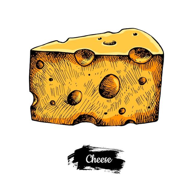 Mão de queijo desenhada. Vetor Premium