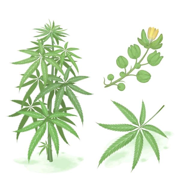 Mão desenhada cannabis verde. conjunto de cannabis estilo aquarela Vetor Premium