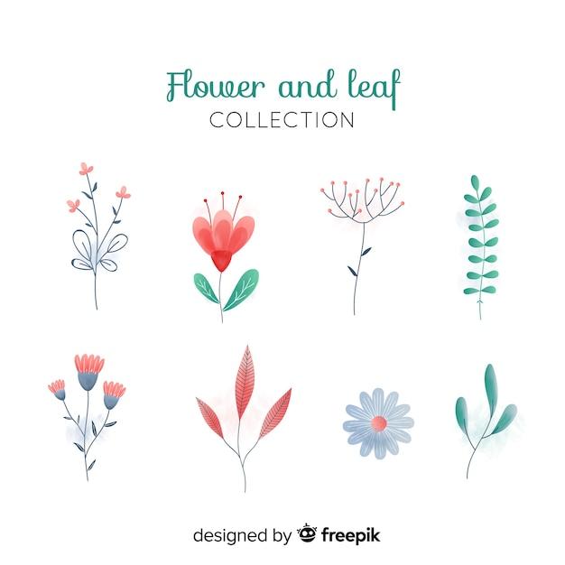 Mão desenhada conjunto de elemento de decoração floral Vetor grátis