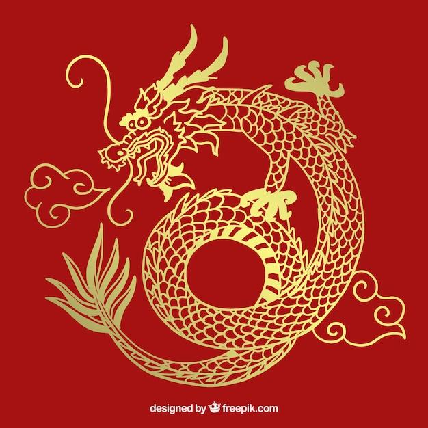 Mão desenhada dragão chinês tradicional Vetor grátis