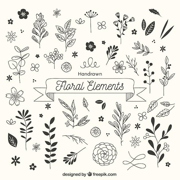 Mão desenhada elementos florais com estilo esboçado Vetor grátis