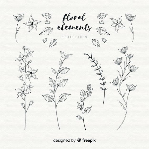 Mão desenhada elementos ornamentais florais Vetor grátis