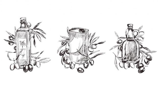 Mão desenhada estilo retro ilustração de ramos de oliveira Vetor Premium