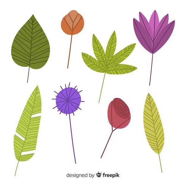 Mão desenhada flores coloridas e folhas coleção Vetor grátis