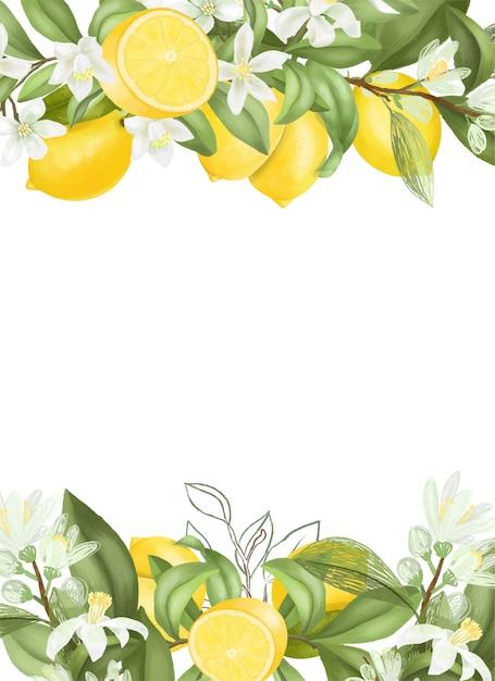 Mão desenhada florescendo galhos de árvores de limão, flores, limões. Vetor Premium