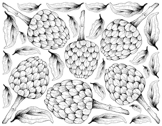 Mão desenhada fundo de frutos maduros de cerejeira Vetor Premium