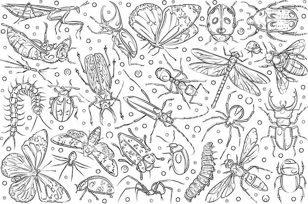 Mão desenhada insetos formiga e borboleta. Vetor Premium